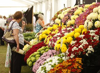 The Floral Art and Flower Shows