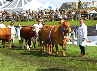 Lincolnshire Show 2020 cancelled